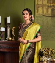 Serraw Kanchi Weaving Design Saree