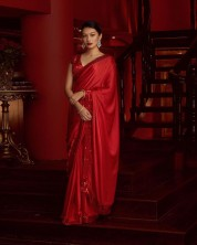 Beautiful Designer Sequence Work and Lace Border in Saree